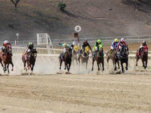 La llegada del caballo a Venezuela